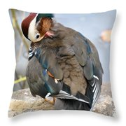 Duck Tails At The Buffalo Zoo Throw Pillow