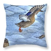 Duck Take-off Throw Pillow