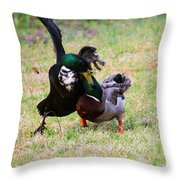 Duck Tussle II Throw Pillow