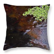 Duck Weed And Ice Throw Pillow