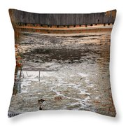 Ducking Under The Bridge Throw Pillow