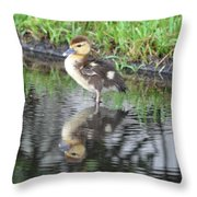 Duckling With Reflection Throw Pillow