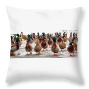 Duckorama Throw Pillow