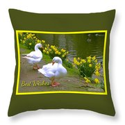 Ducks And Daffodils Greeting Throw Pillow