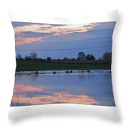 Ducks And Geese At Sunset Throw Pillow