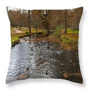 Ducks And Leaves Throw Pillow