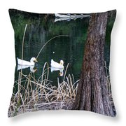 Ducks And Turtles Throw Pillow