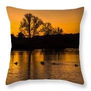 Ducks At Sunrise On Golden Lake Nature Fine Photography Print  Throw Pillow