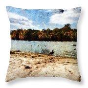 Ducks At The Beach Again Throw Pillow