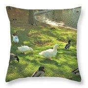 Ducks At The Park Throw Pillow