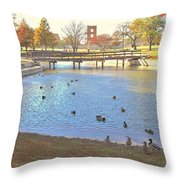 Ducks At The Park Pond Throw Pillow