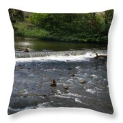 Ducks Enjoying The Open Air Throw Pillow