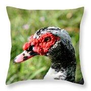 Duck's Eye Throw Pillow