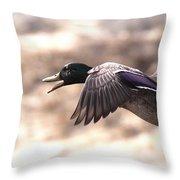 Ducks Have Teeth - Mallard Throw Pillow