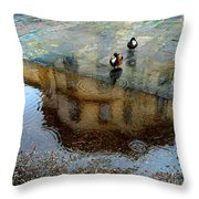 Ducks Of Isola Madre.italy Throw Pillow