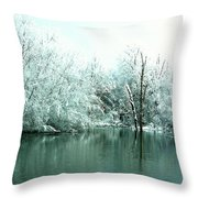 Ducks On A Snowy Pond Throw Pillow