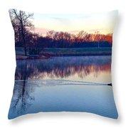 Duck's Sunrise Throw Pillow