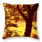 Ducks Swimming In The Distance Throw Pillow