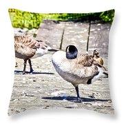 Ducky Dance Throw Pillow
