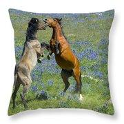 Dueling Mustangs Throw Pillow