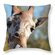 Duh Throw Pillow