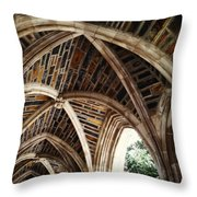 Duke Arches Throw Pillow