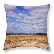 Dune Grass And Clouds Throw Pillow