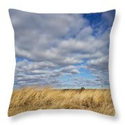 Dune Grass And Sky Throw Pillow