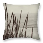 Dune Grass In Early Spring Throw Pillow