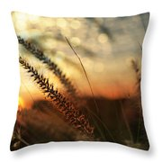 Dune Throw Pillow by Laura Fasulo