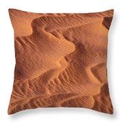 Dune Patterns - 245 Throw Pillow