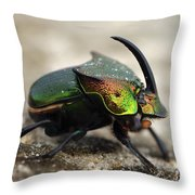 Dung Beetle Throw Pillow