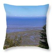 Dungeness Harbor Throw Pillow