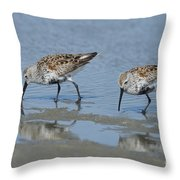 Dunlins Throw Pillow