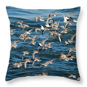 Dunlins In Flight Throw Pillow