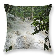 Dunns River Falls 3 Throw Pillow