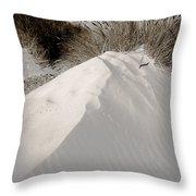 Duotone Dune Throw Pillow