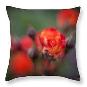 Dusk Romantic Rose Throw Pillow
