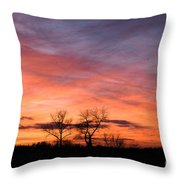 Dust Bunnies At Sundown Throw Pillow