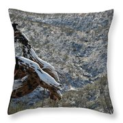 Dusted Throw Pillow
