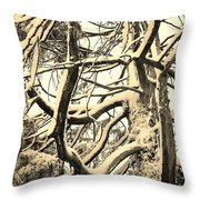 Snow Dusted Limbs Throw Pillow