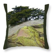 Dusted With Gold Throw Pillow