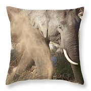 Dusting Off Dinner Throw Pillow