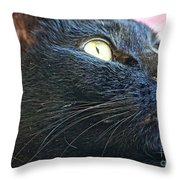 Dusty Black Cat Throw Pillow