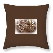 Dusty Memories Throw Pillow by Jim Finch