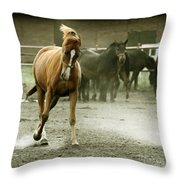 Dusty Paddock Throw Pillow