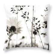 Dusty Travels Throw Pillow