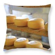 Dutch Cheese Throw Pillow