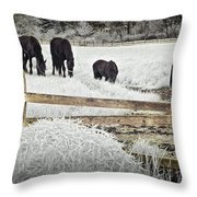 Dutch Friesian Horses Behind A Wooden Fence In A Pasture Throw Pillow