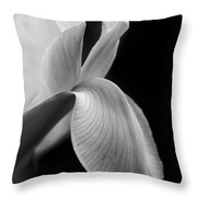 Dutch Iris Flower Macro Black And White Throw Pillow